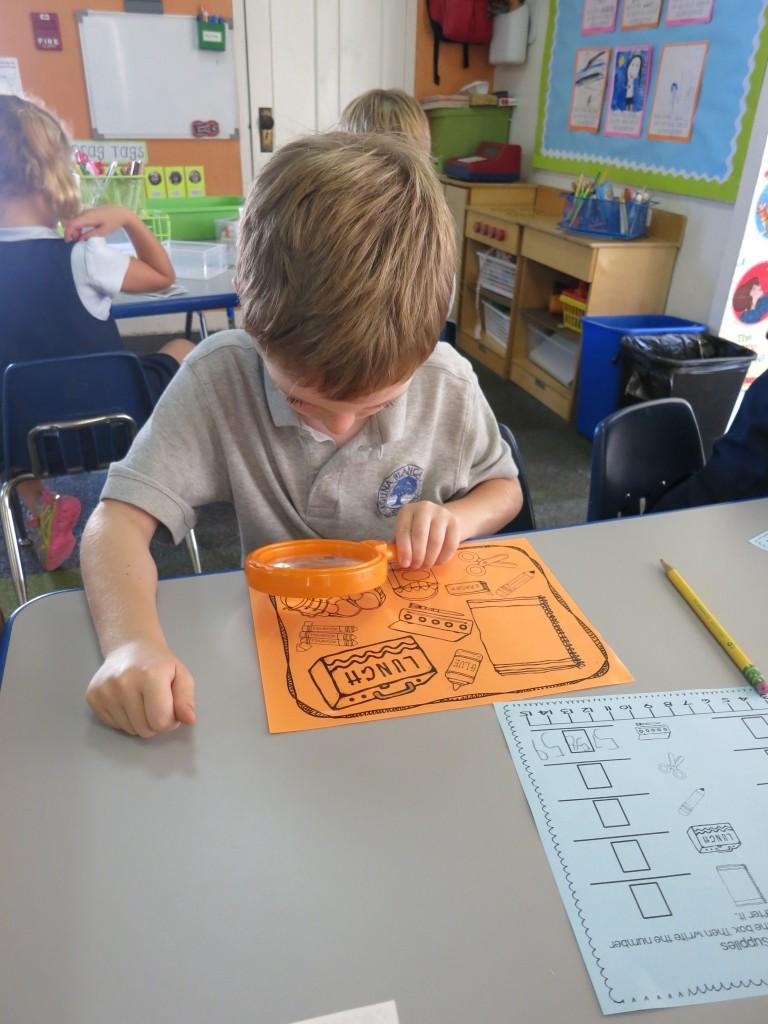 A Dolphin Visits Kindergarten Teacher s Notebook