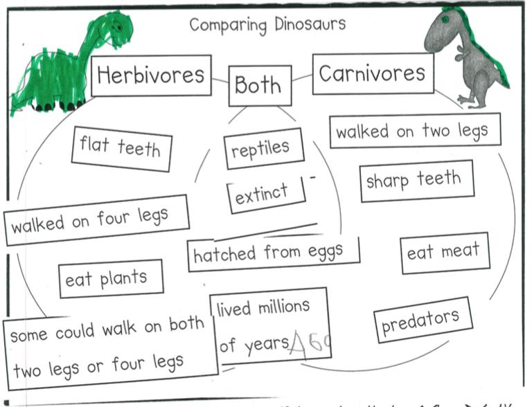 Predator carnivore venn diagram application wiring diagram carnivore swoop into kindergarten rh mdelwiche edublogs org 3 circle venn diagram venn diagram examples ccuart Image collections