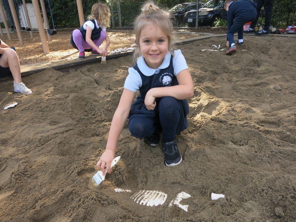 dinosaur fossils | Swoop into Kindergarten